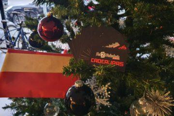 TIPS voor onder de kerstboom!